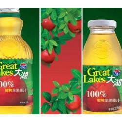 100%纯饮料 大湖 饮料 果汁——255ml装 苹果汁 24瓶/箱
