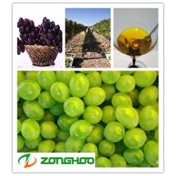 葡萄籽油贴牌  葡萄籽油代工  食用植物油