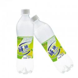 【天蕴泉水】500ml*20咸碘盐汽水10箱包邮新品特价厂家饮用苏打水