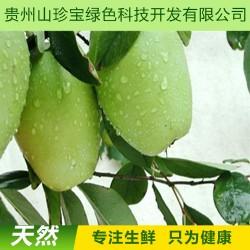【火热预订】基地自产 贵州高原新鲜特级优特 野木瓜  批发团购