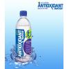 美国ALKAZONE品牌碱性抗氧化离子水,浓缩液